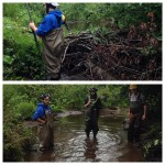Removing inactive beaver dams