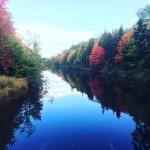 Mooney's Pond