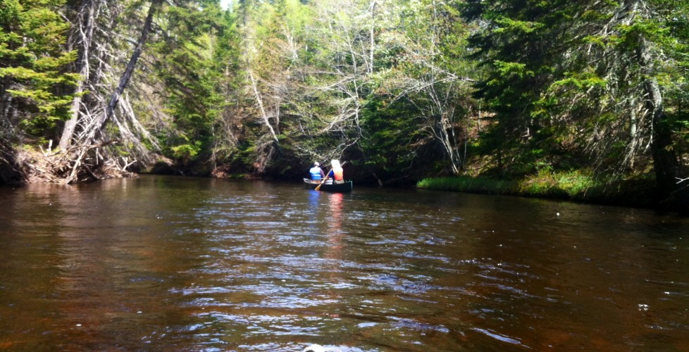 Canoeing Down the Morell River
